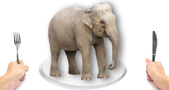 Resultado de imagem para eat an elephant