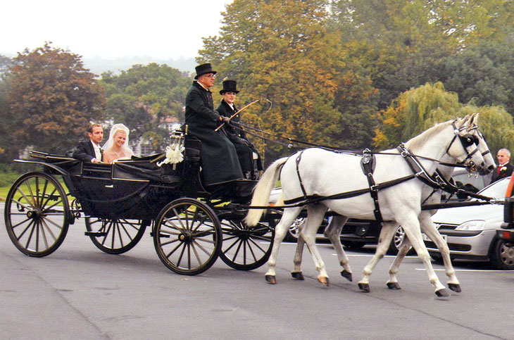 horsedrawn-carriage